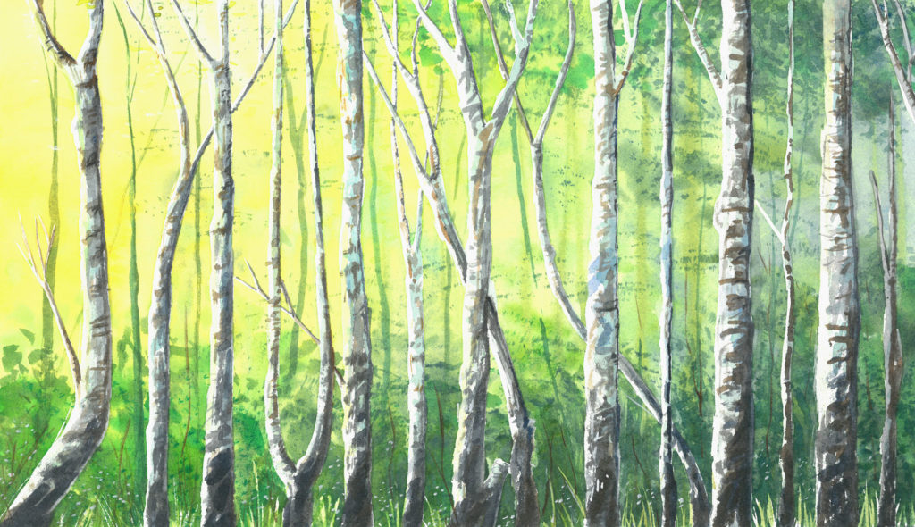 Into the woods, watercolour on paper