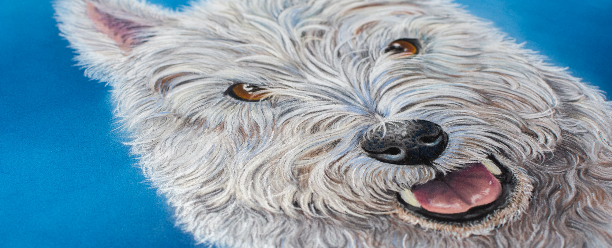 drawing commission of Freddy the westie