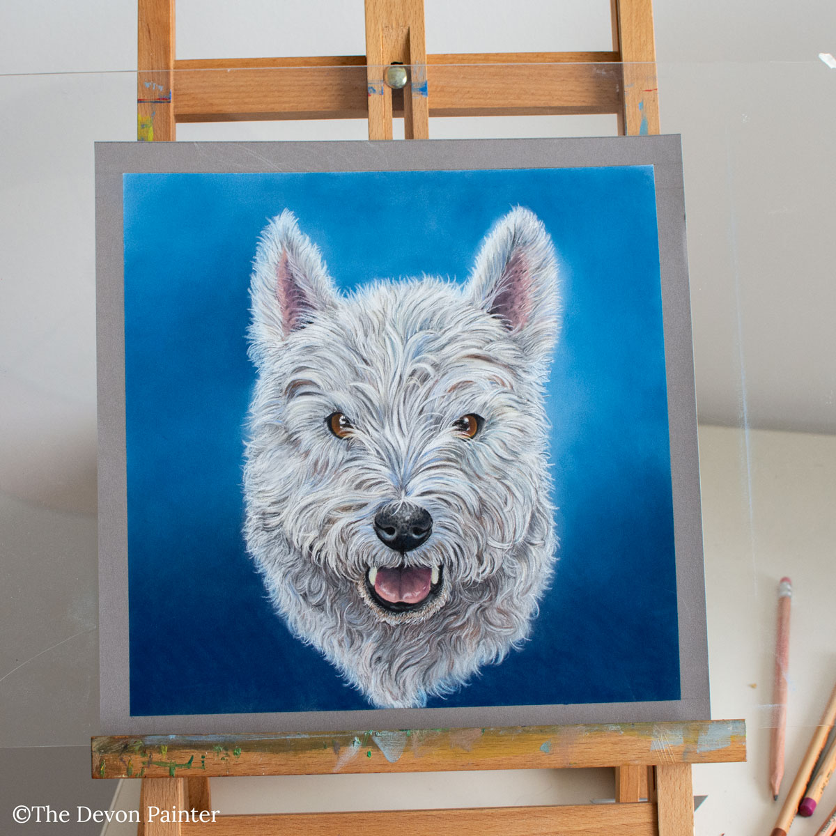 Pastel Pencil commission of Freddy the Westie