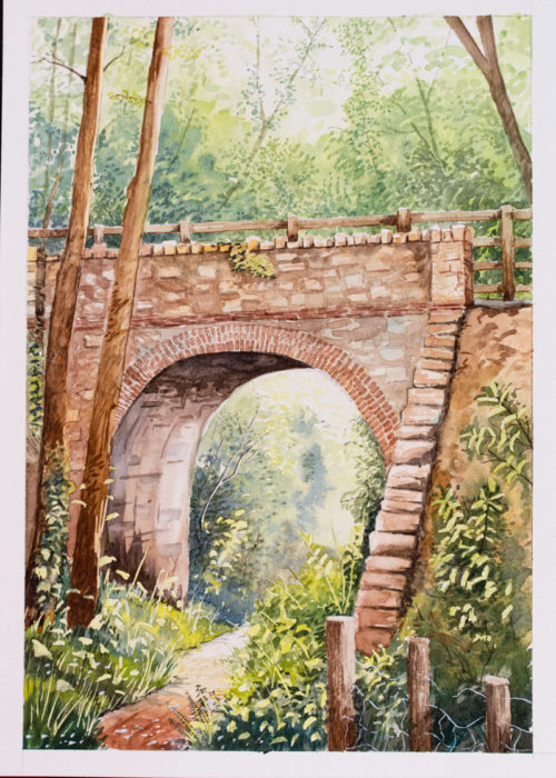 Original Watercolour painting by Ollie Eskriett The devon painter