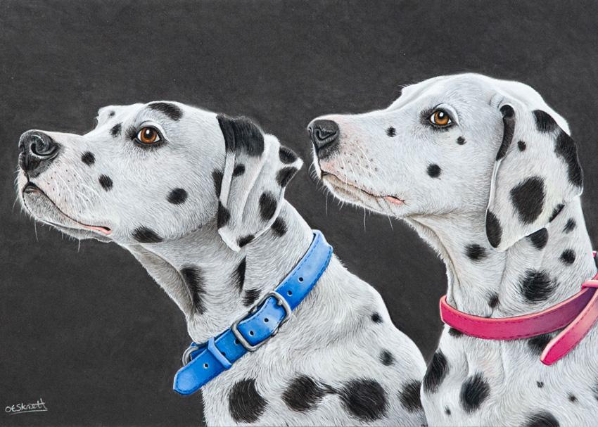 The Devon Painter, Dalmatians Pastel commission