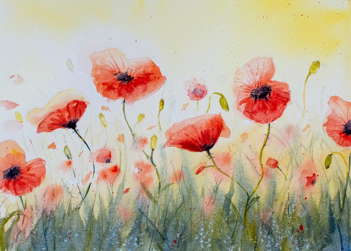 The Devon Painter, Poppies