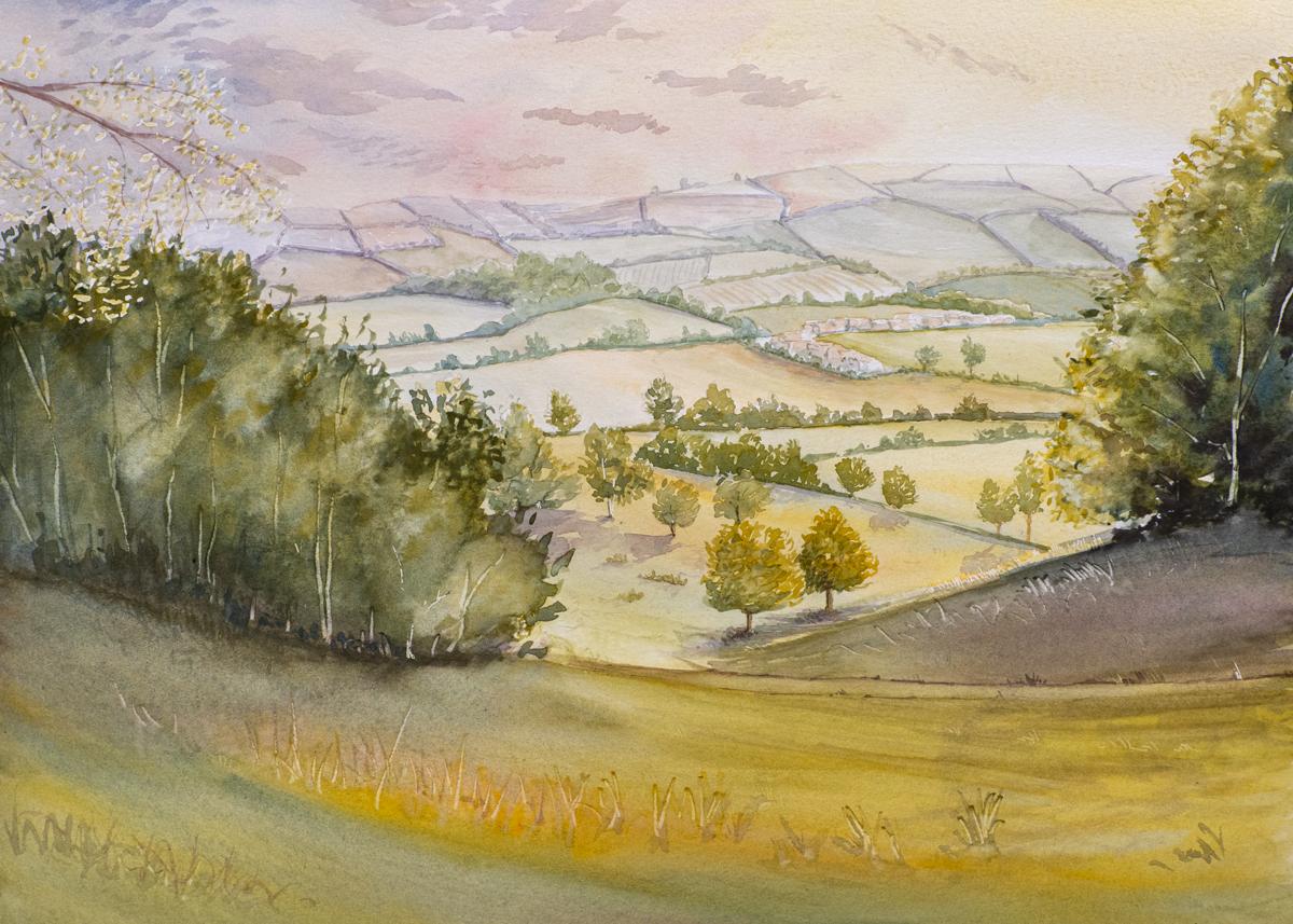 The Devon Painter, Killerton House Walk